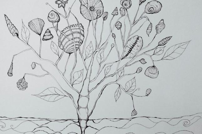 schelpenboom